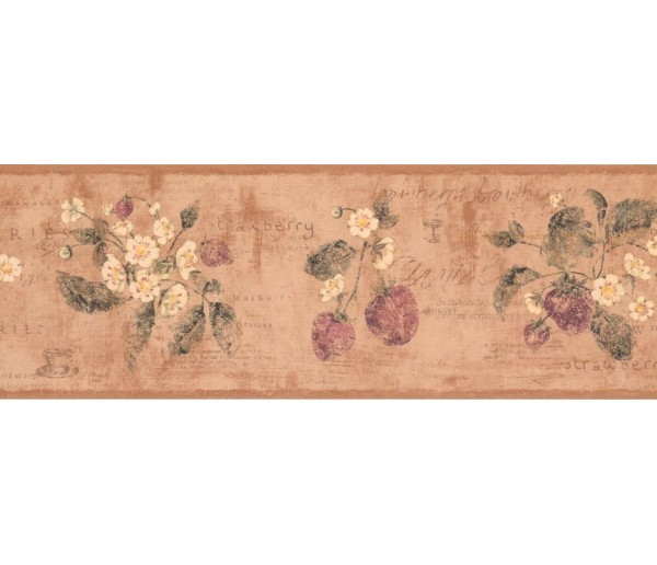 New  Arrivals Wall Borders: Fruits and Flower Wallpaper Border RY3289B
