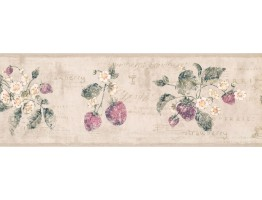 Prepasted Wallpaper Borders - Flower and Fruits Wall Paper Border RY3291B