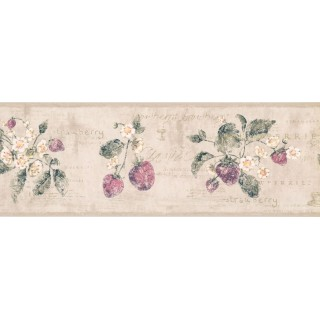 7 in x 15 ft Prepasted Wallpaper Borders - Flower and Fruits Wall Paper Border RY3291B
