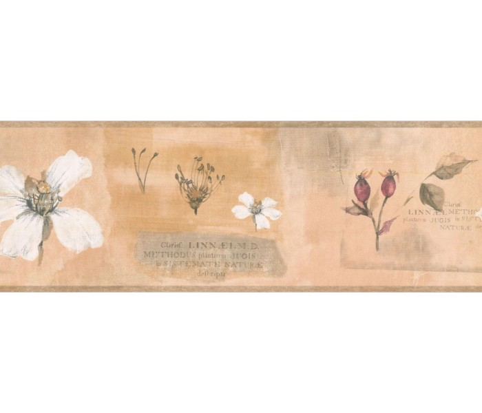New  Arrivals Wall Borders: Floral Wallpaper Border RY3385B