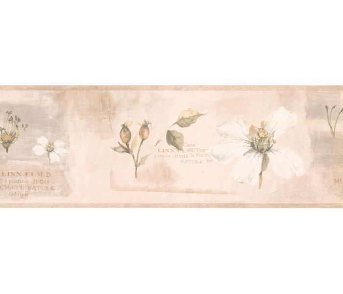 New  Arrivals Wall Borders: Floral Wallpaper Border RY3386B