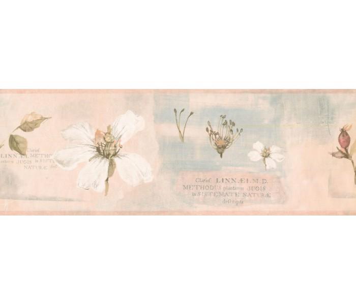 New  Arrivals Wall Borders: Floral Wallpaper Border RY3388B