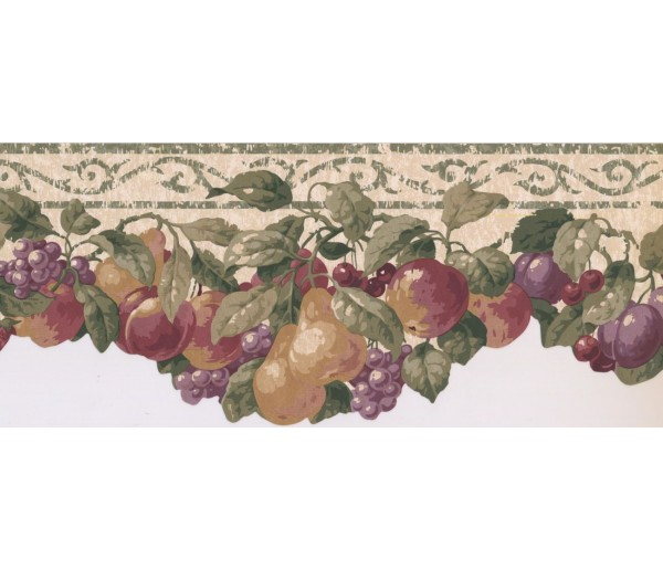 New  Arrivals Wall Borders: Fruits Wallpaper Border SC028153B