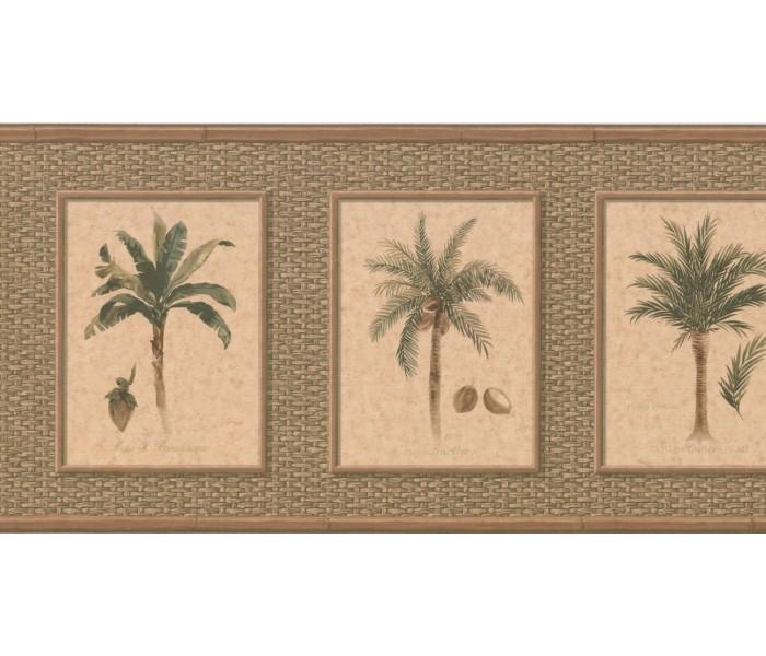 New  Arrivals Wall Borders: Palm Tree Wallpaper Border TK6246B