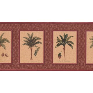 10 1/4 in x 15 ft Prepasted Wallpaper Borders - Palm Tree Wall Paper Border TK6248B
