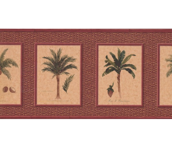New  Arrivals Wall Borders: Palm Tree Wallpaper Border TK6248B