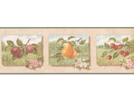 7 in x 15 ft Prepasted Wallpaper Borders - Fruits Wall Paper Border UL105053