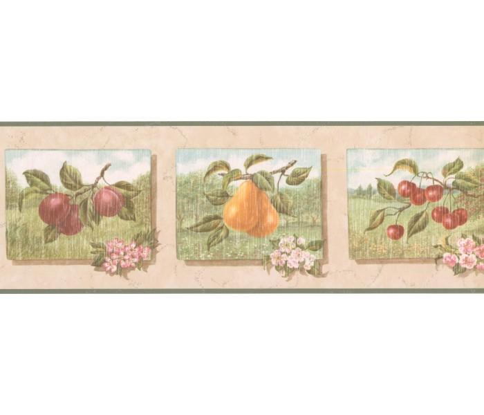 New  Arrivals Wall Borders: Fruits Wallpaper Border UL105053
