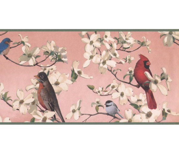 New  Arrivals Wall Borders: Birds Wallpaper Border WE609B