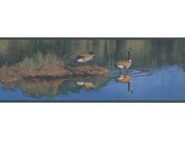 Birds Wallpaper Border WE621B