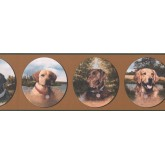 New Arrivals Dogs Wallpaper Border WE630B Seabrook