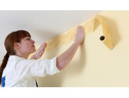 Prepasted Wallpaper Borders - Horses Wall Paper Border HJ6700