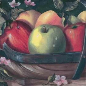 Fruits Wallpaper Borders
