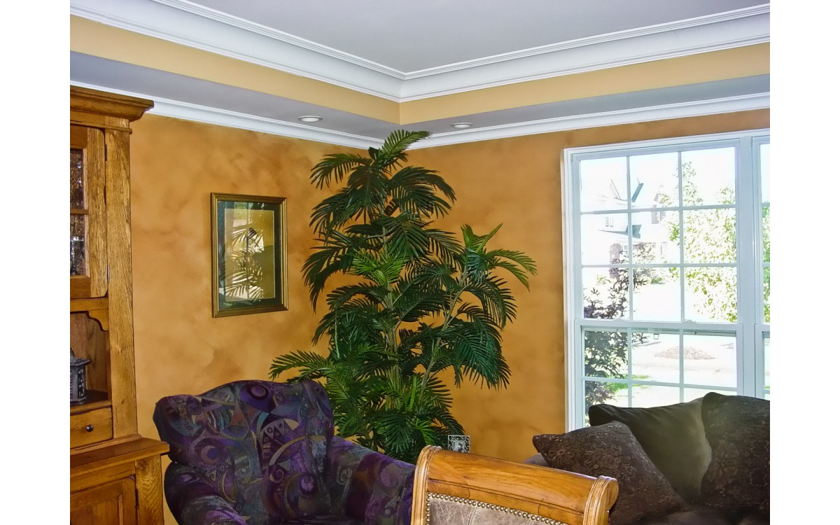 4 Cases when Crown Molding is an Absolute No