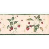 Garden Wallpaper Borders: Fruits Wallpaper Border 1332 CI