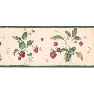10 1/2 in x 15 ft Prepasted Wallpaper Borders - Fruits Wall Paper Border 1332 CI
