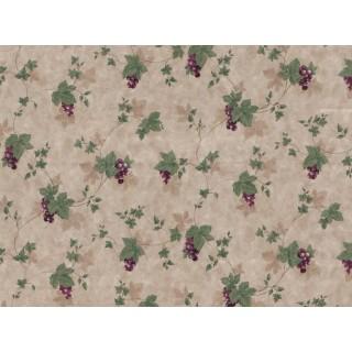 Grape Fruits Wallpaper 21127SP