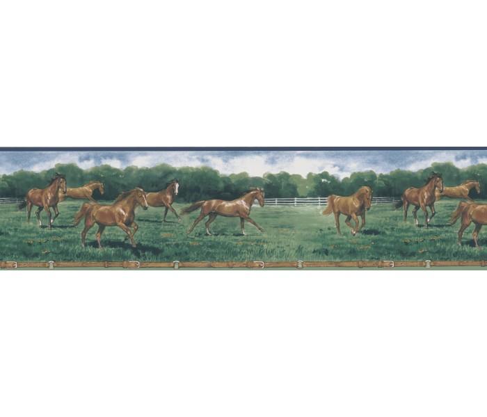 Horses Wallpaper Borders: Horse Wallpaper Border 203B25575