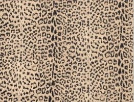 Animal Print Wallpaper 22077