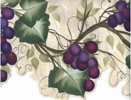 Prepasted Wallpaper Borders - Grapes Wall Paper Border 240B63992
