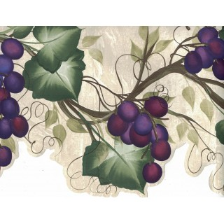 10 1/4 in x 15 ft Prepasted Wallpaper Borders - Grapes Wall Paper Border 240B63992