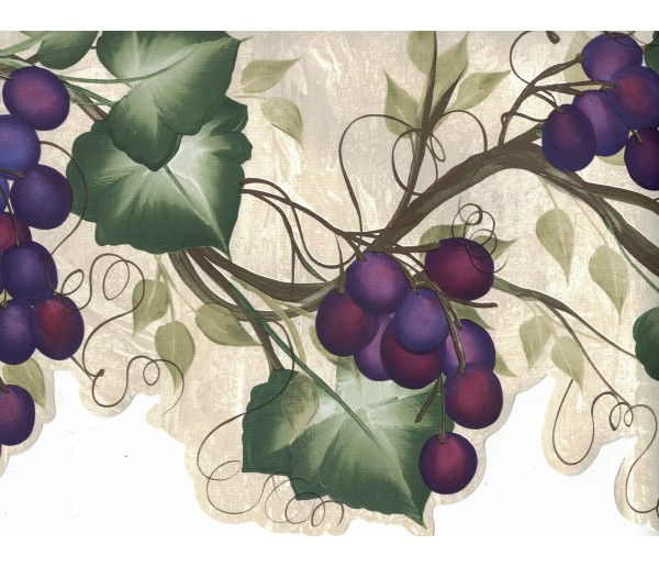 Garden Wallpaper Borders: Grapes Wallpaper Border 240B63992