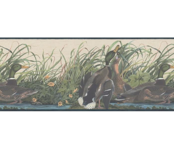 Birds  Wallpaper Borders: Ducks Wallpaper Border 230B33648