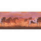 Clearance Horses Wallpaper Border 2632 IN York Wallcoverings