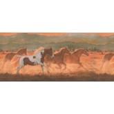 Horses Wallpaper Borders: Horses Wallpaper Border 2634 IN