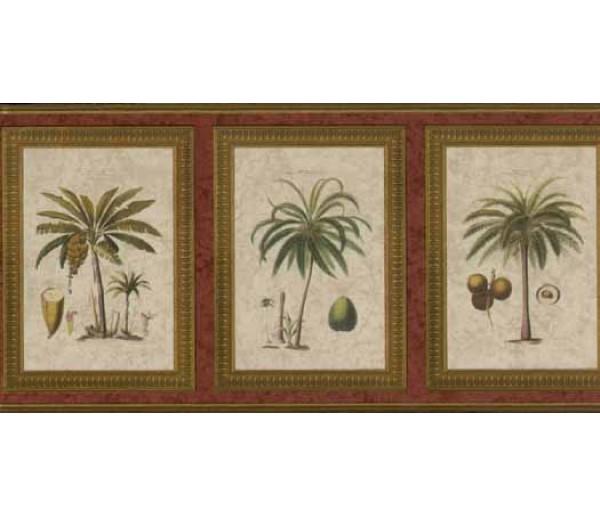 Tropical Wallpaper Borders: Palm Tree Wallapaper Border 5507080