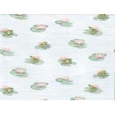Animals Wallpaper: Frogs Wallpaper 6047PKB