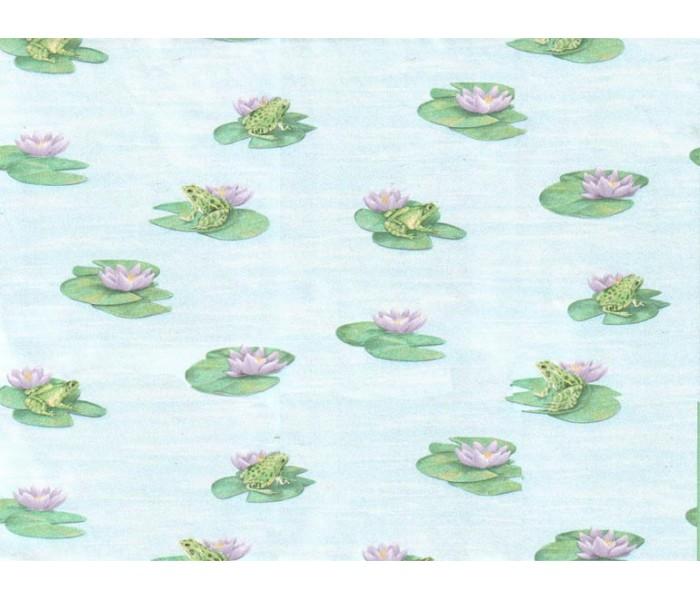 Animals Wallpaper: Frogs Wallpaper 6048PKB