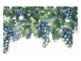 Prepasted Wallpaper Borders - Grapes Leaf Wall Paper Border 6082 KH