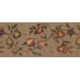 Garden Wallpaper Borders: Fruits Wallpaper Border 62182670