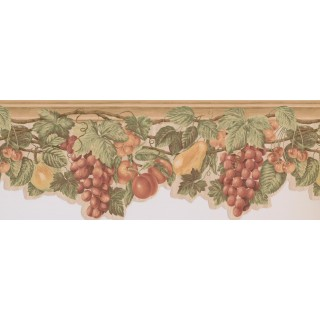9 in x 15 ft Prepasted Wallpaper Borders - Fruits Wall Paper Border 63296230