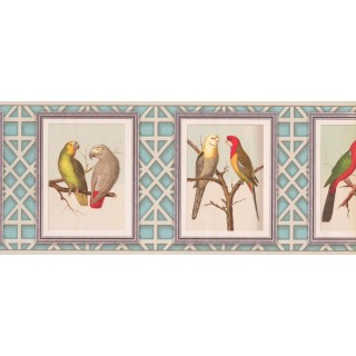 10 1/4 in x 15 ft Prepasted Wallpaper Borders - Birds Wall Paper Border 687510