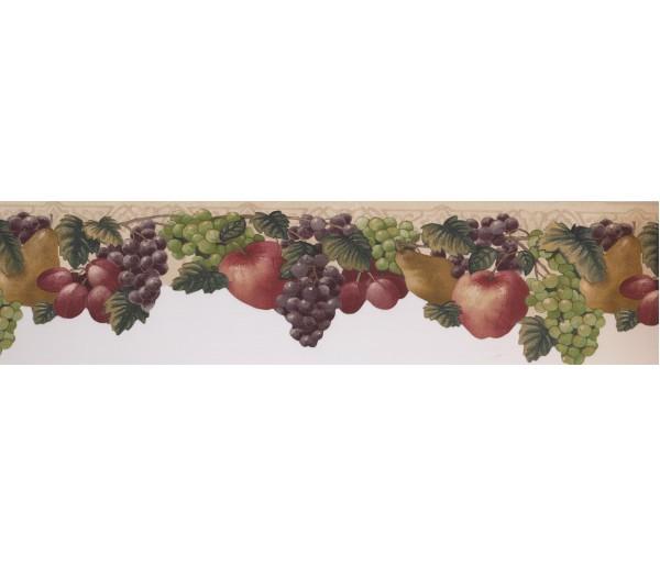 Garden Wallpaper Borders: Fruits Wallpaper Border 72461 JK