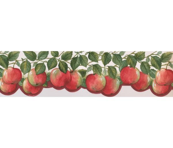 Garden Wallpaper Borders: Fruits Wallpaper Border 76311 BG