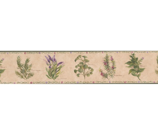 Garden Wallpaper Borders: Floral Wallpaper Border 77900 KT