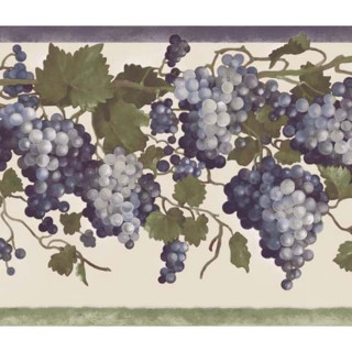 10 in x 15 ft Prepasted Wallpaper Borders - Grape Fruit Wall Paper Border 84B73602