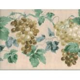 Garden Wallpaper Borders: Grapes Wallpaper Border 948B75723