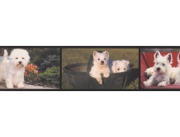 Prepasted Wallpaper Borders - Dogs Wall Paper Border AA1026A