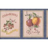 Garden Wallpaper Borders: Fruits Wallpaper Border B0650