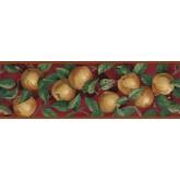 Clearance: Apple Wallpaper Border B10035103