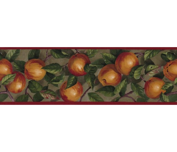 Clearance: Apple Wallpaper Border B10035104