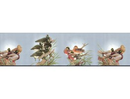 9 in x 15 ft Prepasted Wallpaper Borders - Birds Wall Paper Border B2061DU