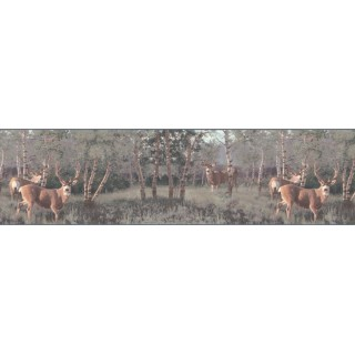 10 1/4 in x 15 ft Prepasted Wallpaper Borders - Deers Wall Paper Border B2184PG