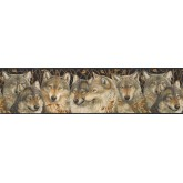 Animal Wallpaper Borders: Animals Wallpaper Border MRL2403