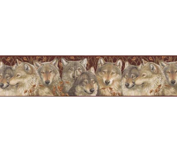 Animal Wallpaper Borders: Animals Wallpaper Border MRL2405