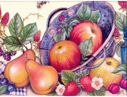 Prepasted Wallpaper Borders - Fruits Wall Paper Border b4026wc